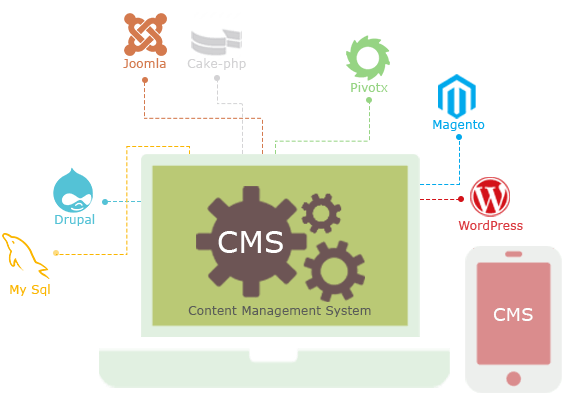 Content Management System Solution