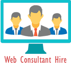 Image result for web consultant